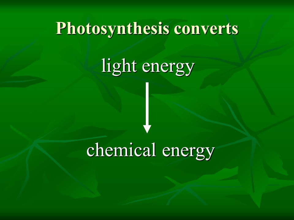 Photosynthesis converts
