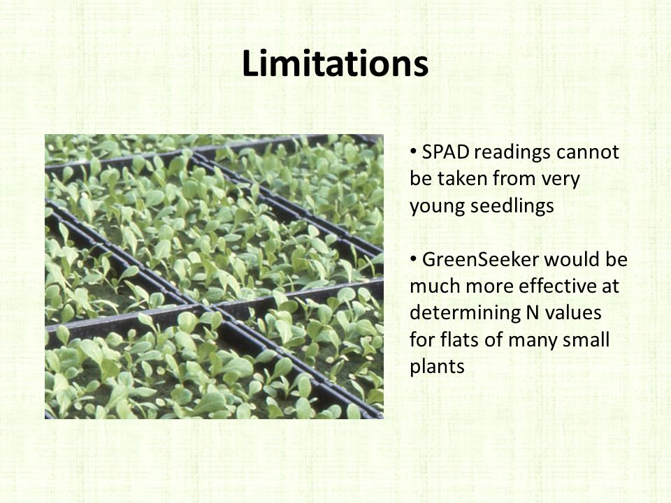 Limitations SPAD readings cannot be taken from very young seedlings