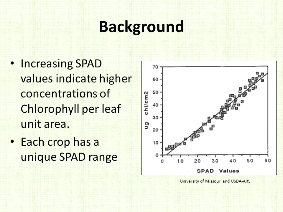 Background Increasing SPAD values indicate higher concentrations of Chlorophyll per leaf unit area.