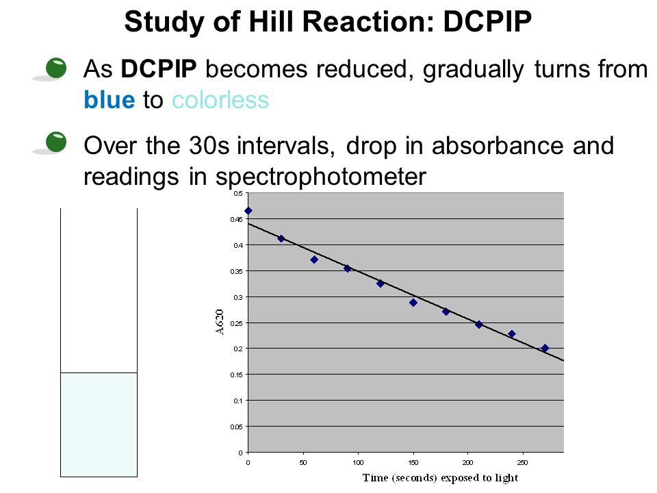 Study of Hill Reaction: DCPIP