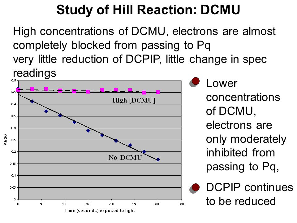 Study of Hill Reaction: DCMU