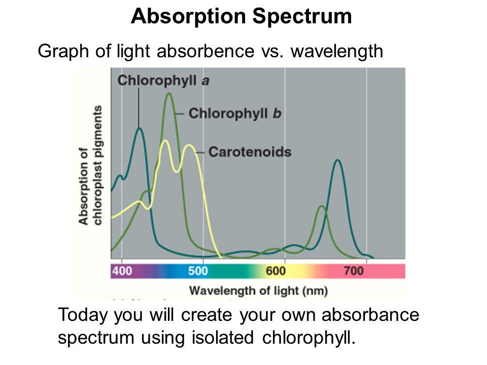 Absorption Spectrum Graph of light absorbence vs. wavelength