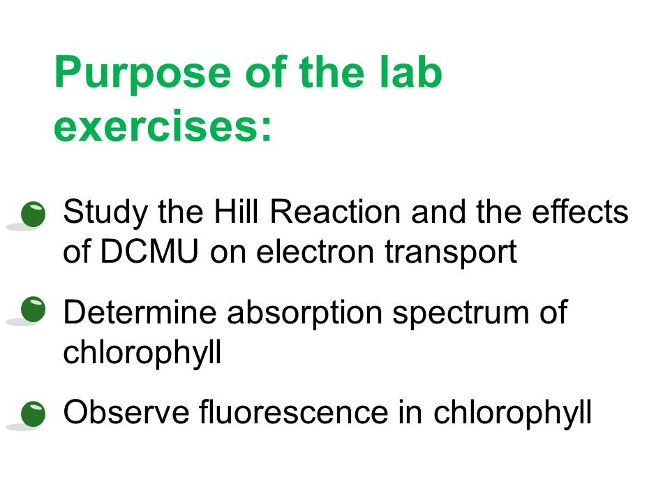 Purpose of the lab exercises: