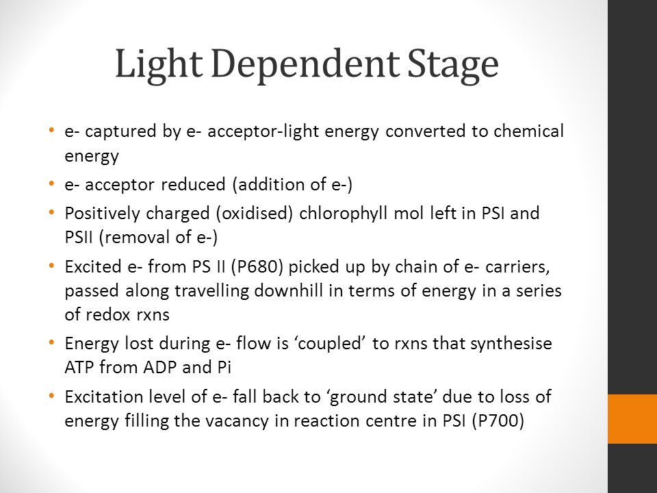Light Dependent Stage e- captured by e- acceptor-light energy converted to chemical energy. e- acceptor reduced (addition of e-)
