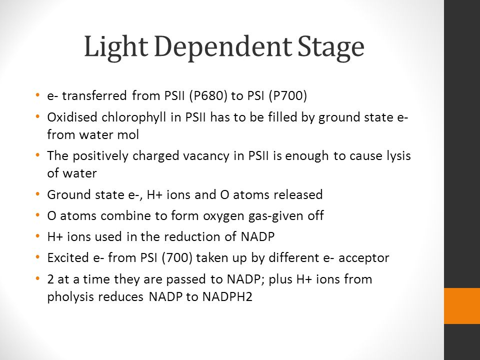 Light Dependent Stage e- transferred from PSII (P680) to PSI (P700)