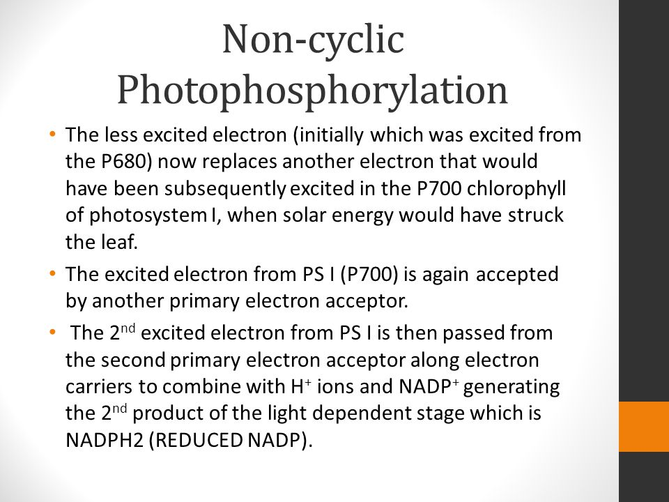 Non-cyclic Photophosphorylation