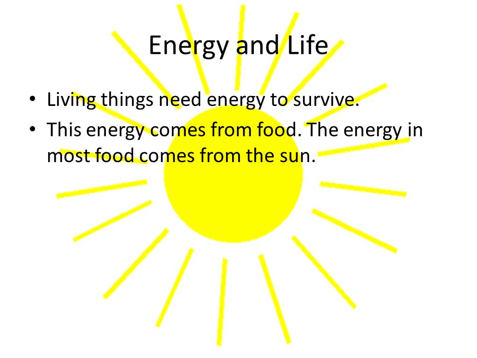 Energy and Life Living things need energy to survive.