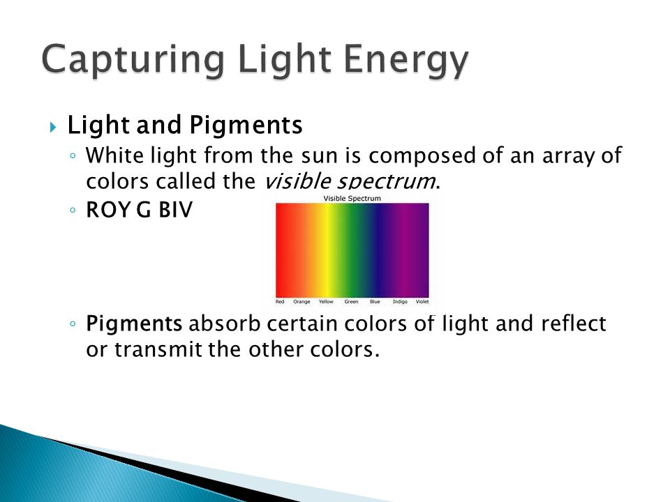 Capturing Light Energy
