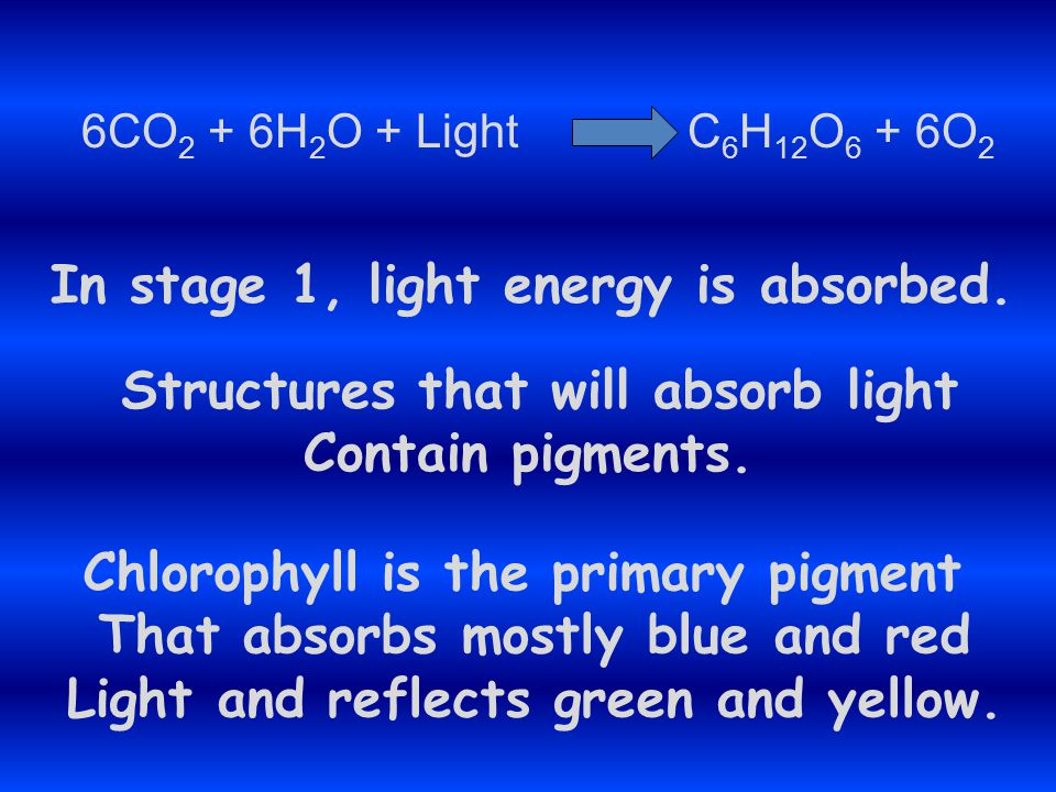 In stage 1, light energy is absorbed.