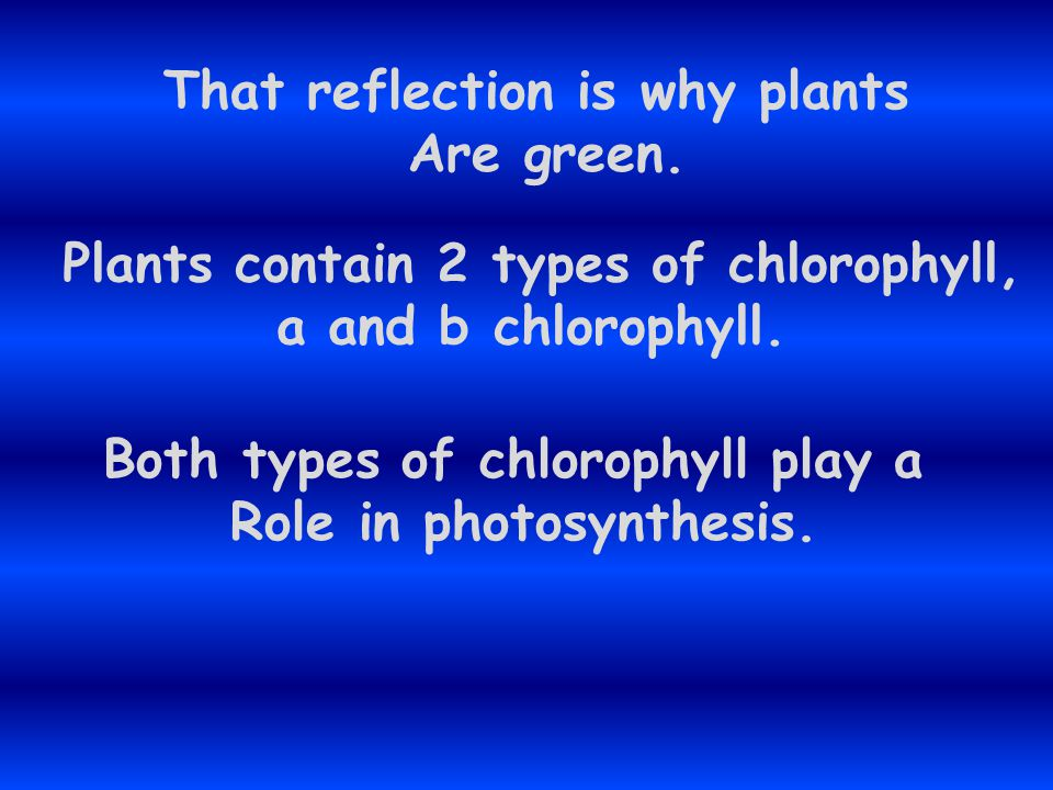 That reflection is why plants Are green.