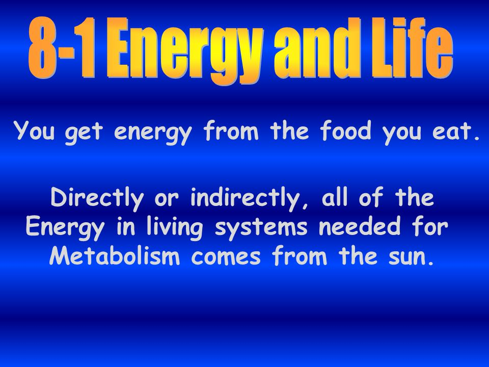 You get energy from the food you eat.