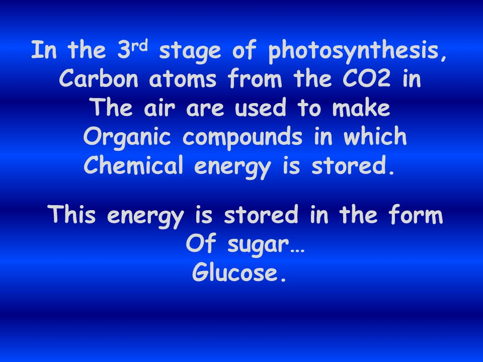 In the 3rd stage of photosynthesis, Carbon atoms from the CO2 in