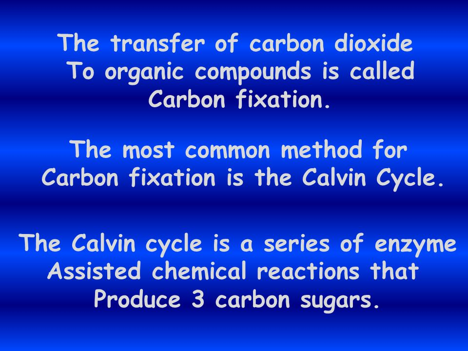 The transfer of carbon dioxide To organic compounds is called