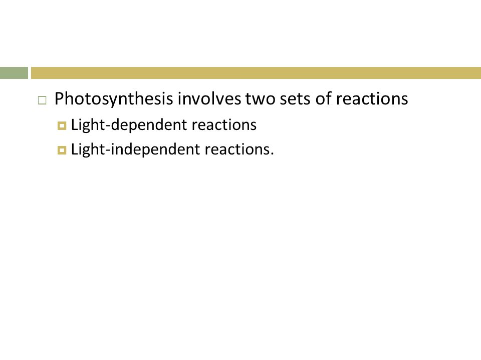 Photosynthesis involves two sets of reactions