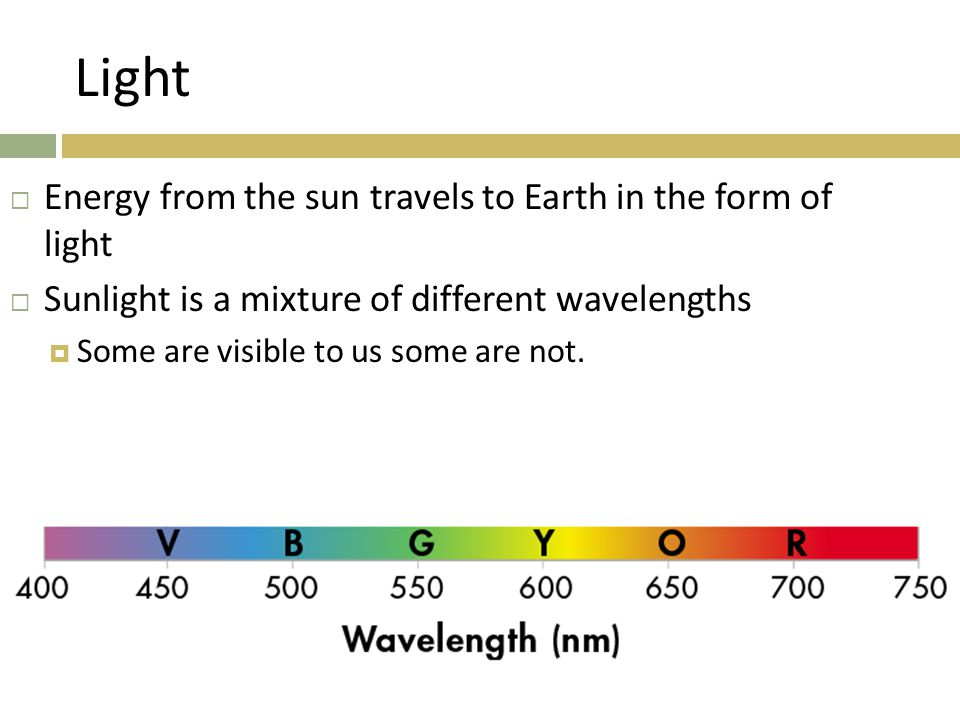 Light Energy from the sun travels to Earth in the form of light