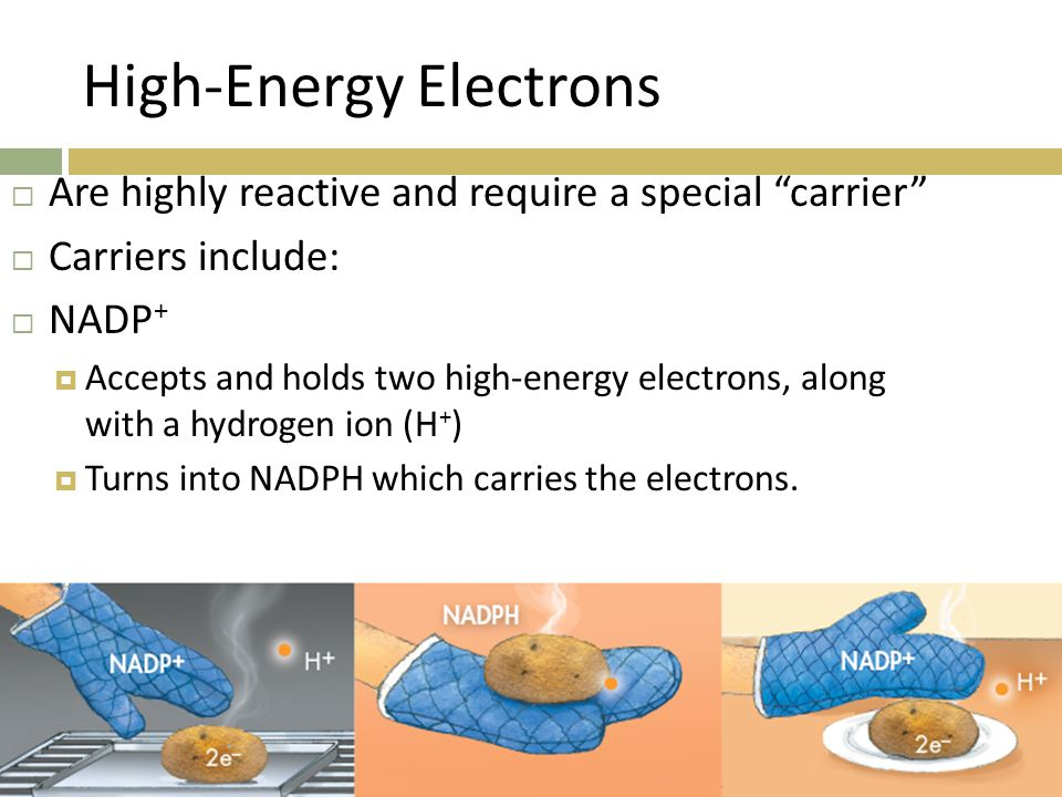 High-Energy Electrons