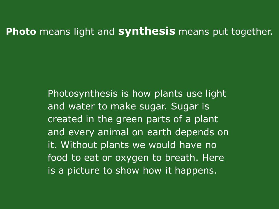 Photo means light and synthesis means put together.