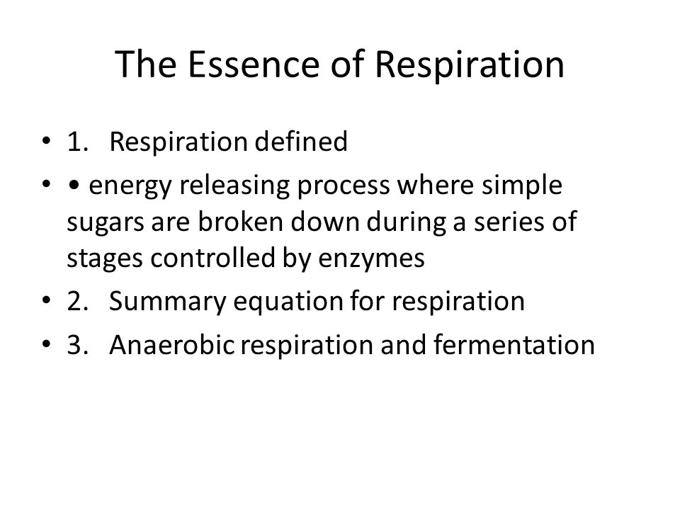 The Essence of Respiration