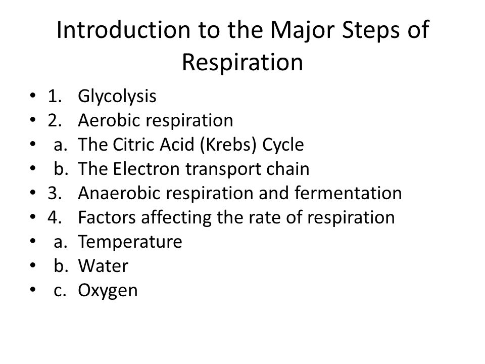 Introduction to the Major Steps of Respiration