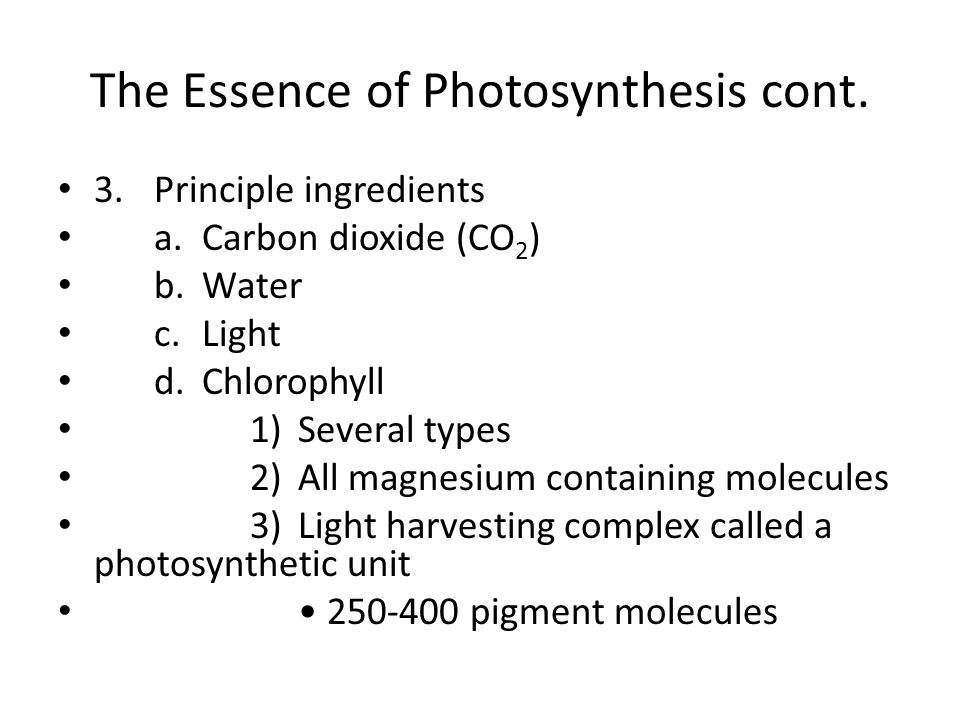 The Essence of Photosynthesis cont.