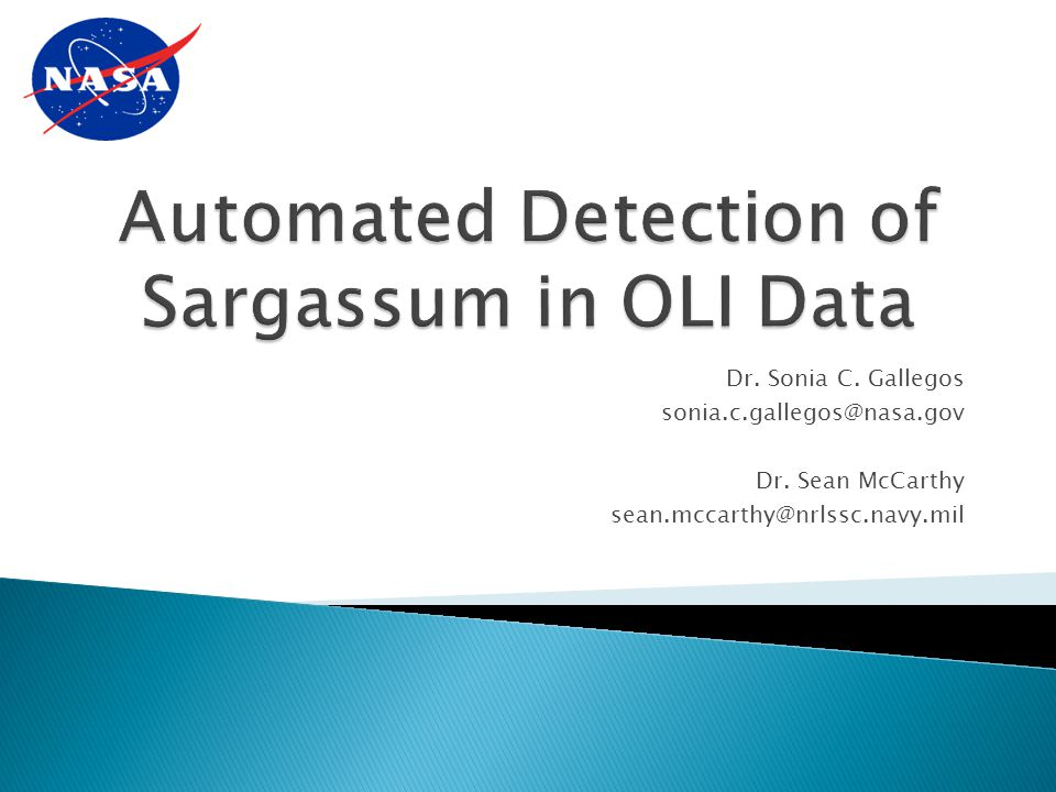 Automated Detection of Sargassum in OLI Data