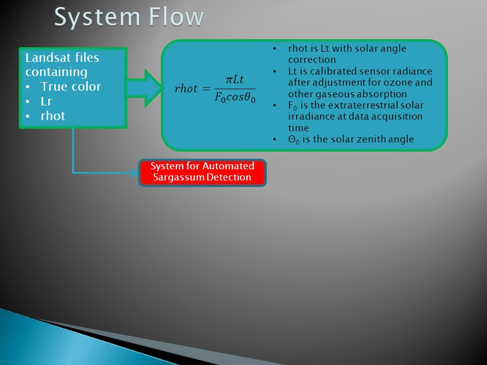 System for Automated Sargassum Detection