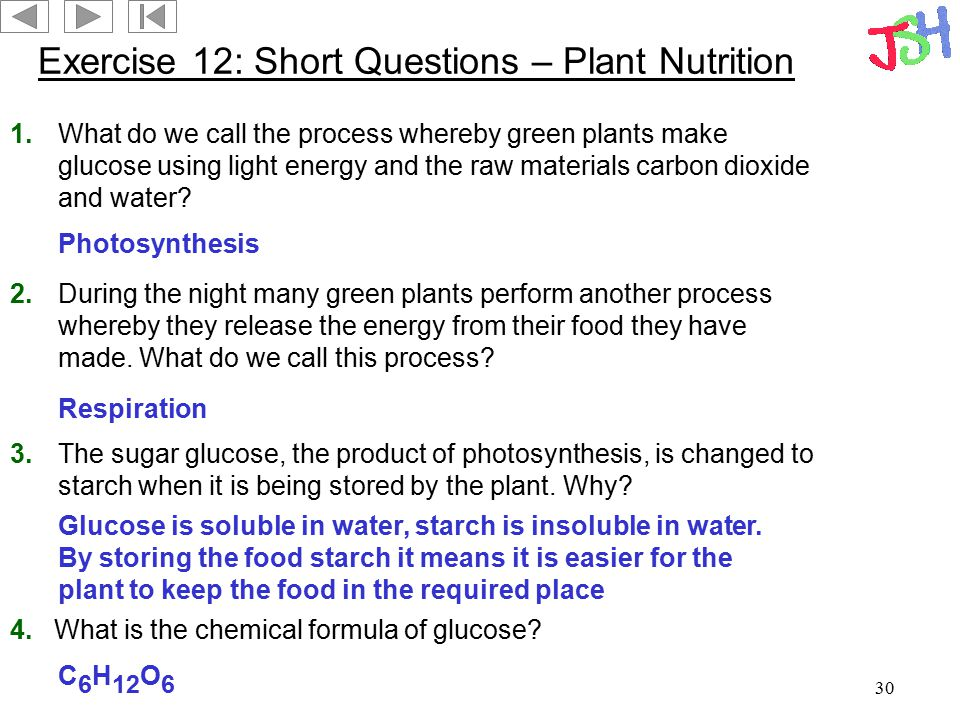 Exercise 12: Short Questions – Plant Nutrition