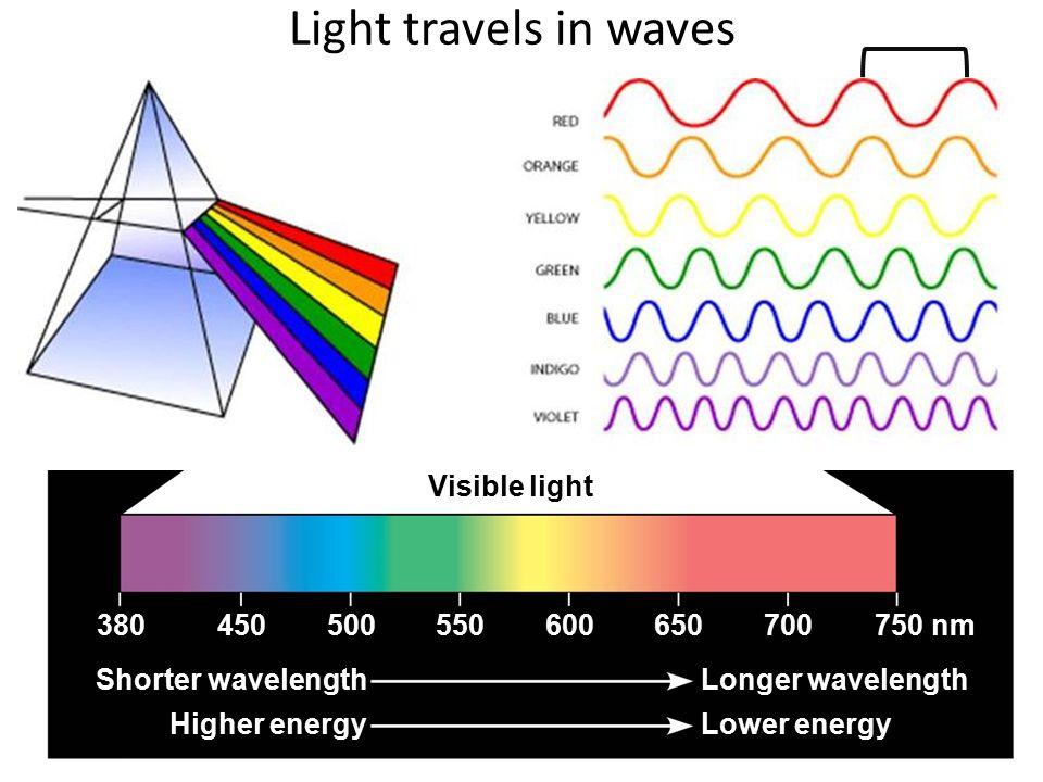 Light travels in waves Visible light Shorter wavelength