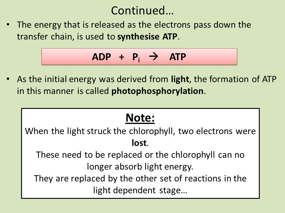 When the light struck the chlorophyll, two electrons were lost.
