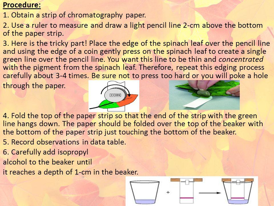 Procedure: 1. Obtain a strip of chromatography paper. 2