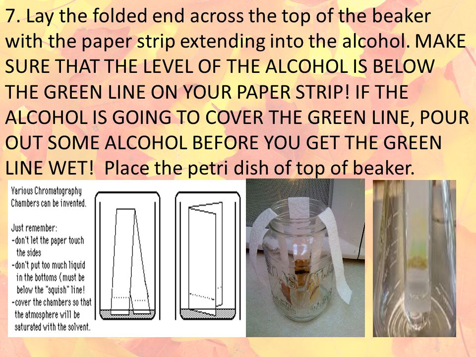 7. Lay the folded end across the top of the beaker with the paper strip extending into the alcohol.