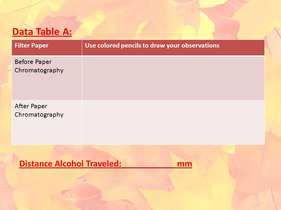 Data Table A: Distance Alcohol Traveled: ___________ mm Filter Paper