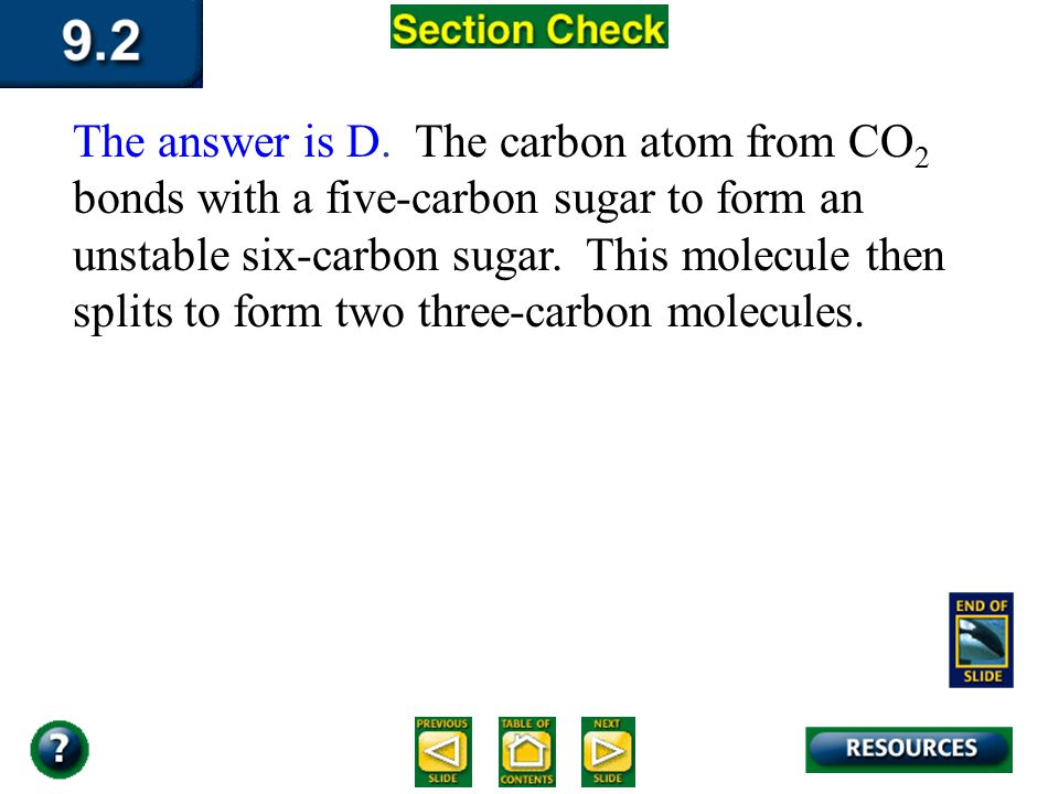 The answer is D. The carbon atom from CO2 bonds with a five-carbon sugar to form an unstable six-carbon sugar. This molecule then splits to form two three-carbon molecules.