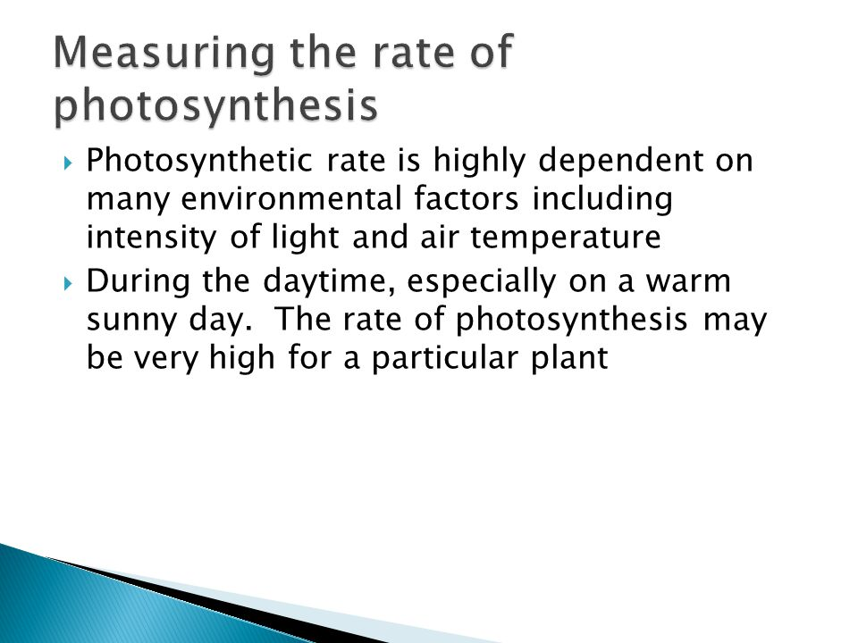Measuring the rate of photosynthesis