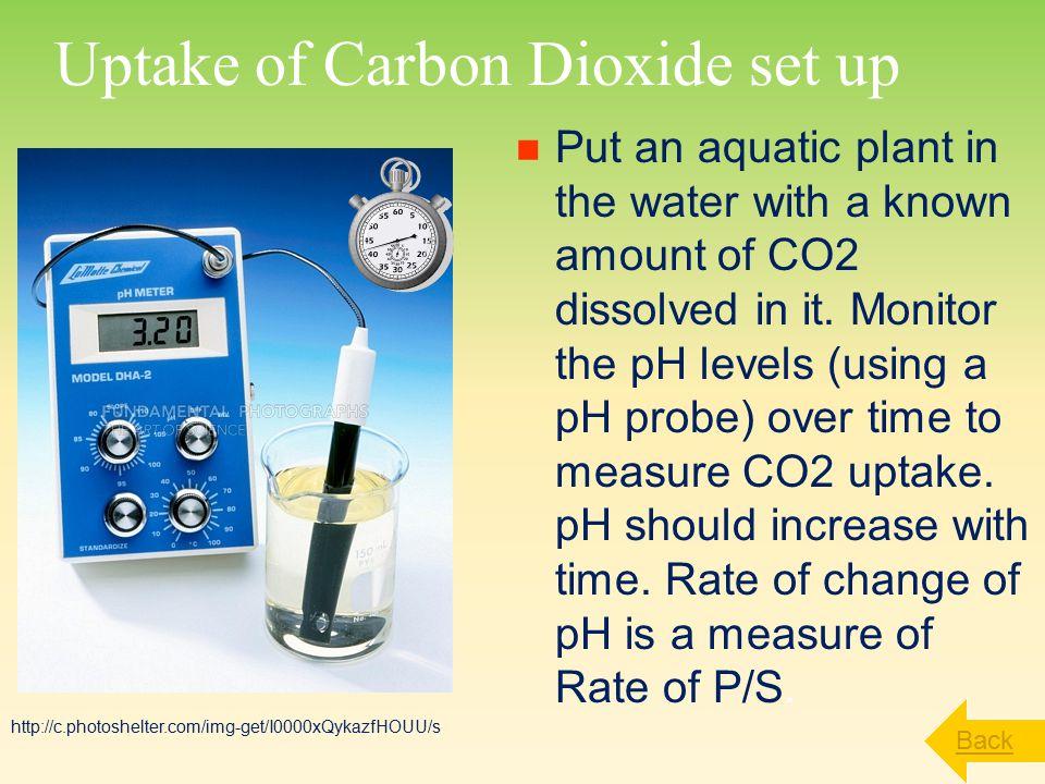 Uptake of Carbon Dioxide set up