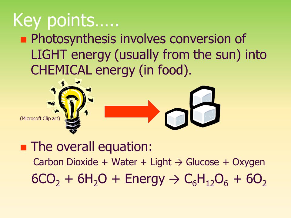 Carbon Dioxide + Water + Light → Glucose + Oxygen