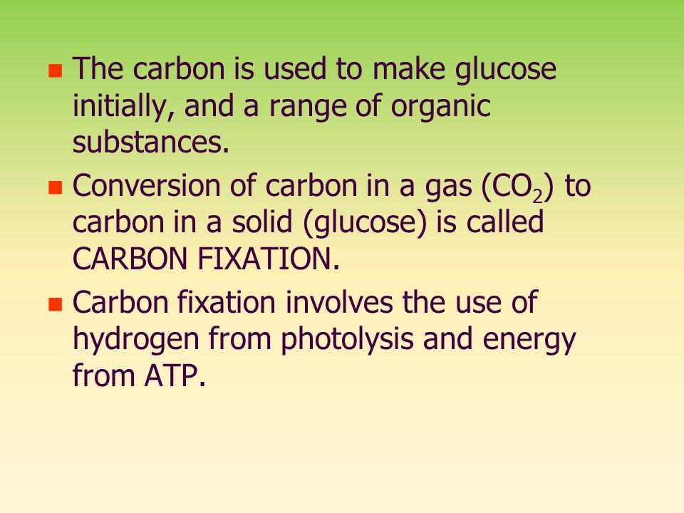 The carbon is used to make glucose initially, and a range of organic substances.
