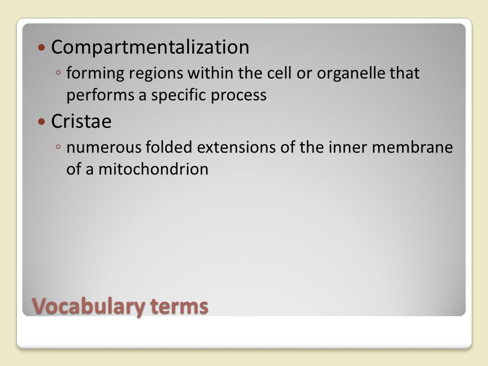 Vocabulary terms Compartmentalization Cristae