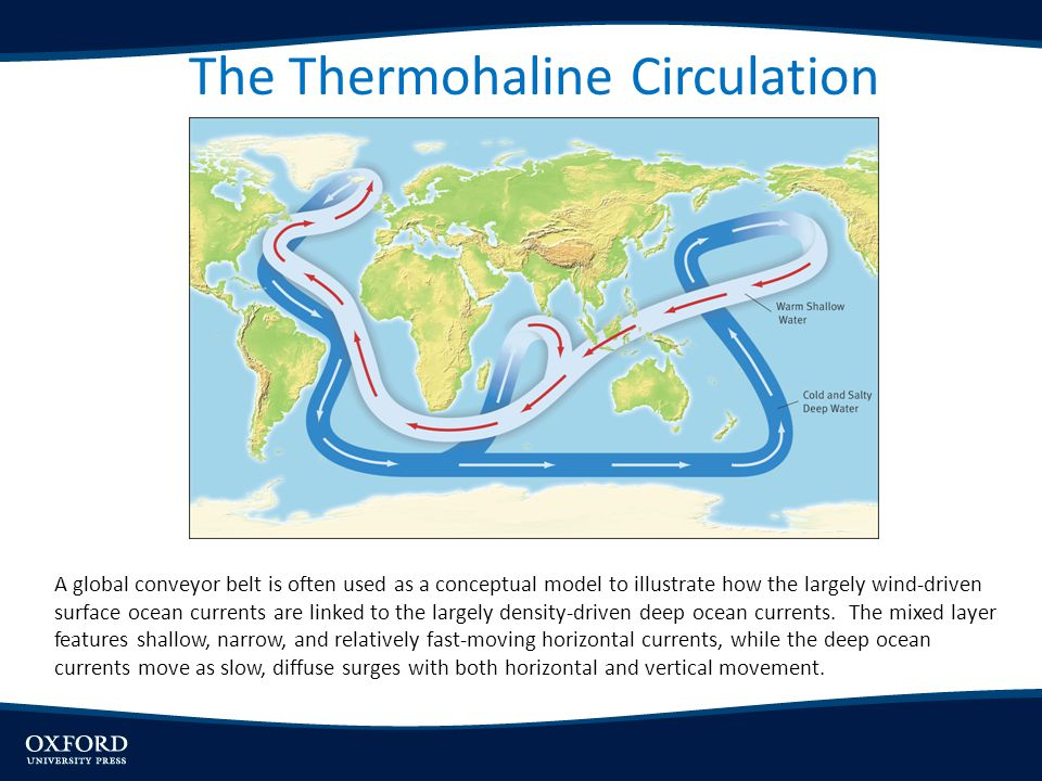 The Thermohaline Circulation
