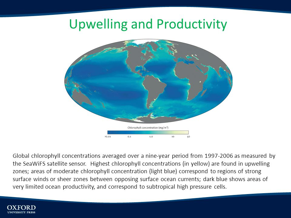 Upwelling and Productivity