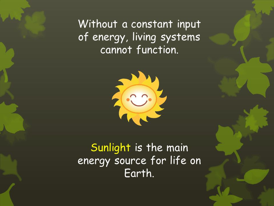 Without a constant input of energy, living systems cannot function.