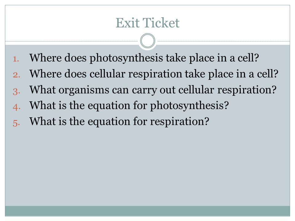 Exit Ticket Where does photosynthesis take place in a cell