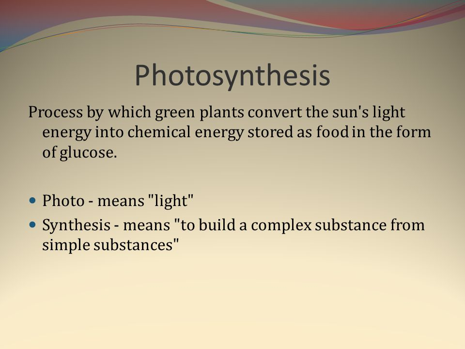 Photosynthesis Process by which green plants convert the sun s light energy into chemical energy stored as food in the form of glucose.