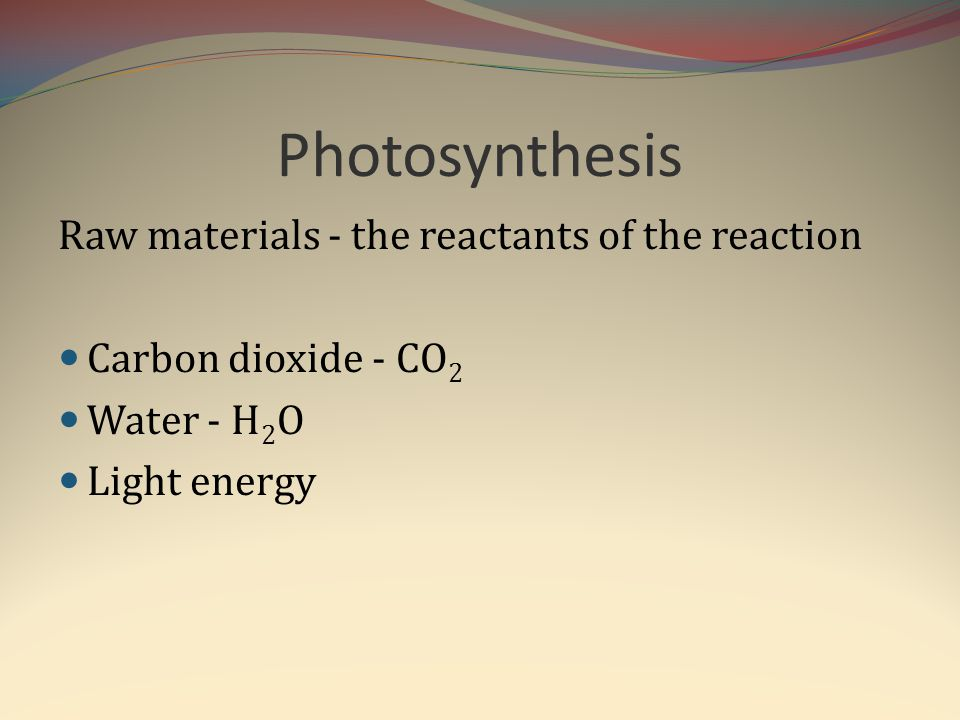 Photosynthesis Raw materials - the reactants of the reaction