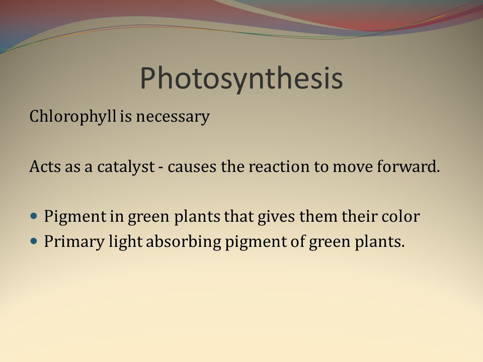 Photosynthesis Chlorophyll is necessary