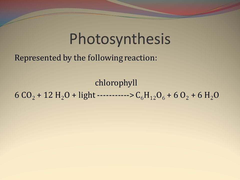 Photosynthesis Represented by the following reaction: chlorophyll 6 CO2 + 12 H2O + light -----------> C6H12O6 + 6 O2 + 6 H2O