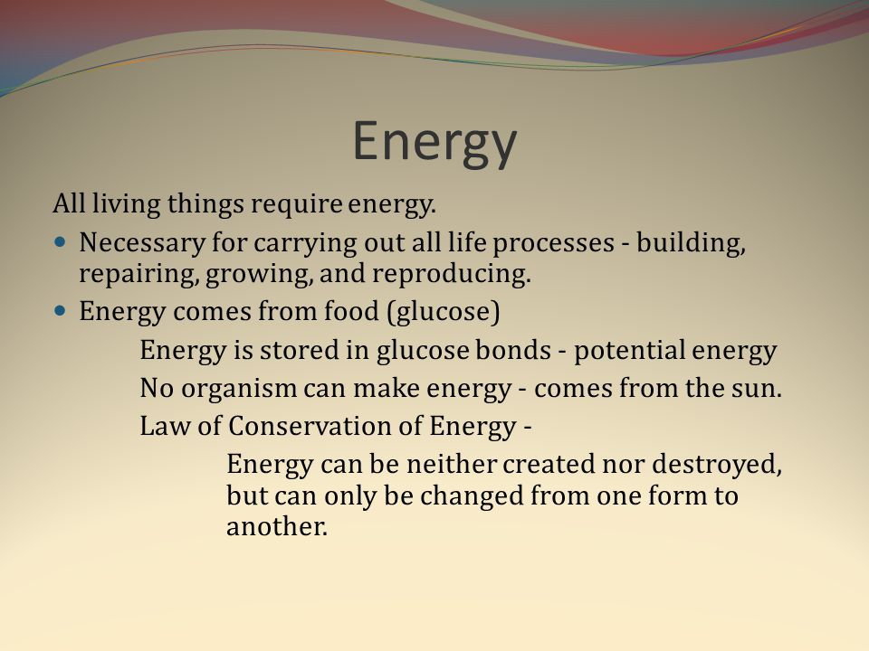 Energy All living things require energy.