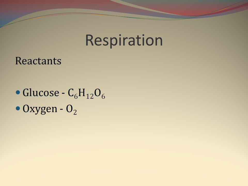 Respiration Reactants Glucose - C6H12O6 Oxygen - O2