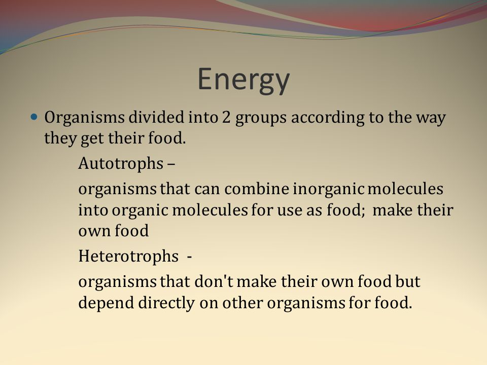 Energy Organisms divided into 2 groups according to the way they get their food. Autotrophs –