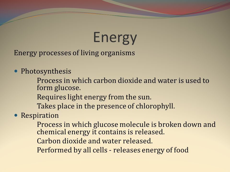 Energy Energy processes of living organisms Photosynthesis